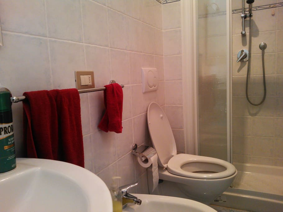 Give a description of a toilet?!?! That's a toilet and there's a bidet (many of you ignore what that is,I know)!