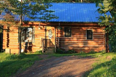 Hi-Tor Hideaway - Cabin