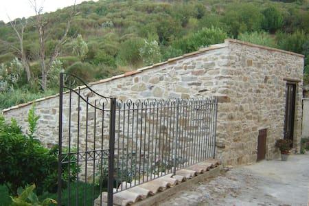 Villetta dei Papiri - Hus