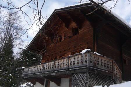 Chalet calme, vue exceptionnelle - Gryon - Huis