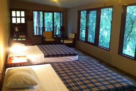 Exclusive Jungle Lodge, Unbeatable location_11 ppl - Palenque
