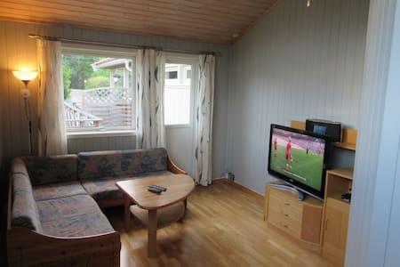 75m2 leilighet (egen inngang i hus) - Kongsvinger - Appartement