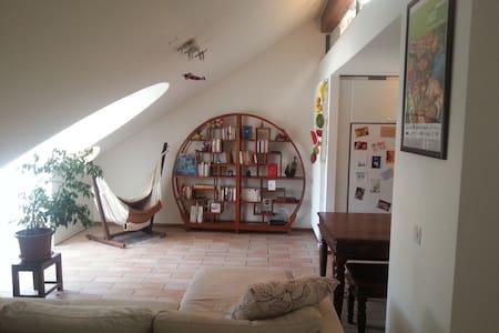 Spacious loft in heart of town - Lausanne - Loft