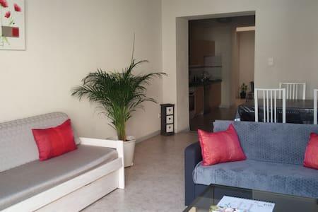 T4 Centre Réalmont - Terrasse panoramique - Réalmont - Apartment