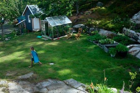 Det lille huset i skogen - House