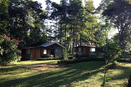 Room type: Private room Property type: Cabin Accommodates: 4 Bedrooms: 1 Bathrooms: 1