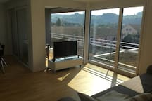 Nice Apartment close to Basel