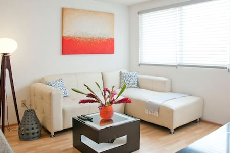 Located in one of the most exclusive areas in Mexico City. You have a very comfortable apartment with all apliances you need and basically everything is new.  Also, you will have a private roof garden where you can make a bbq. WiFi, Cable, etc