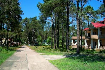 Beach House in Shekvetili - Shekvetili