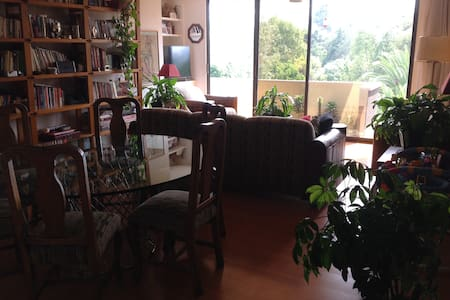 Lovely flat in Coyoacan-Viveros