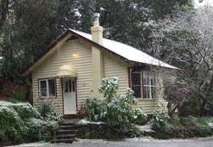 Chestnut Cottage - Blockhütte