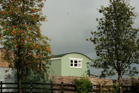 Shepherd's Hut - Cabin