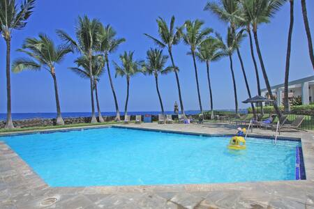Brand new listing. Great September Specials! Lovely tropical one-bedroom condo. Great ocean views - see the whales breech and the dolphins play from your lanai. Then walk down to the oceanfront pool and watch the most amazing sunset in Hawaii.