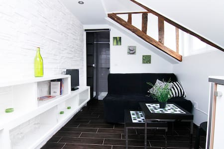 Charmant studio au coeur de Paris - Paris - Appartement