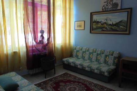 camere in b&b ognuna con servizi - Roaschia