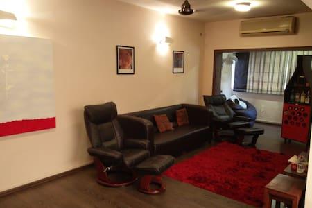 2 Bed room fully furnished Colaba - Mumbai - Apartment