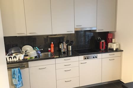 Spacious room in a modern and central appartment! - Zurych - Apartament