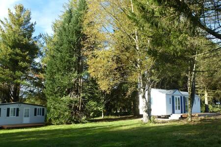Mobile Home Le Mouflon - Saint-Julien-Puy-Lavèze - Bungalov