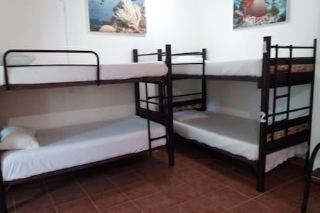 Loft 10 Hostel - Dorm