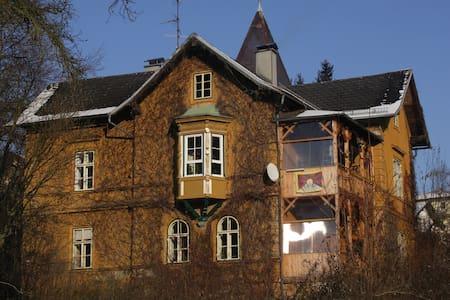 30m² Zimmer in alter Villa mitten im Stadtpark - Ried im Innkreis