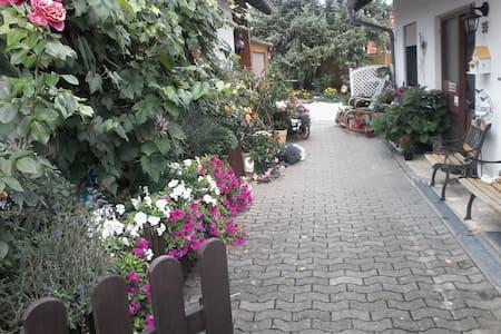 Gemütliche Fewo mit Balkon - Apartamento