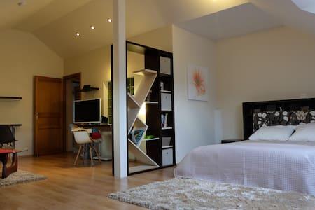 Grande chambre de 45m² - La Roche-des-Arnauds