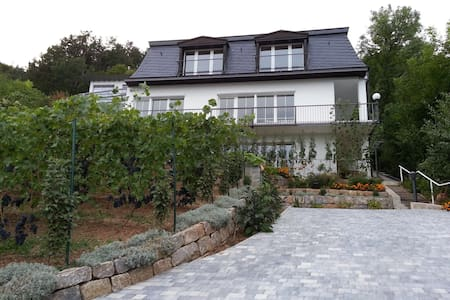 Idyllisches wohnen am Weinberg - Bad Kissingen - Appartement
