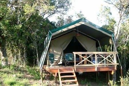 Luxury Safari Tented Lodge - Tenda