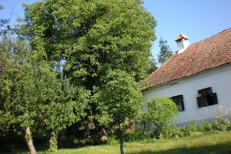 """""""CURIA"""" Stone House from the XVIIth - Wikt i opierunek"""