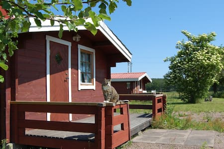 The Findus cabin next to the river Emån - Zomerhuis/Cottage