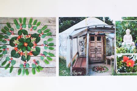 Yourte La Bulle Zen Provence piscine - Yurt