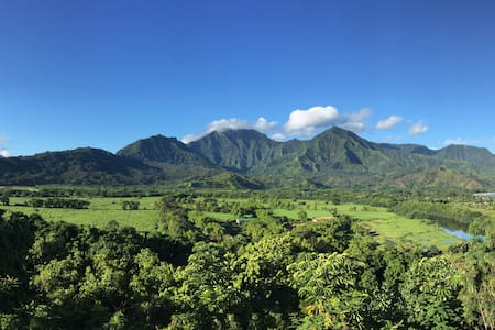 Hanalei Vista: Million Dollar View!
