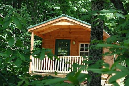 Forest Den Cabin - Hendersonville - Kulübe