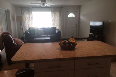Remodeled 2 bed in St. Pete! - St Petersburg - House
