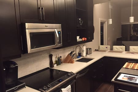 1 BR in Luxury High Rise Downtown
