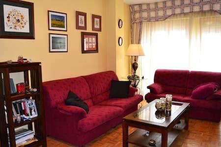 Piso ideal para visitar Jaca - Jaca - Apartment