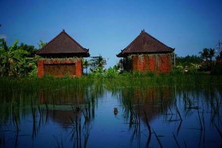 keramas surfcamp bali at rice field