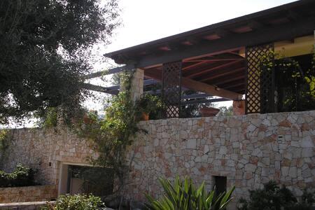 prestigiosa villa in valle d'itria - Villa
