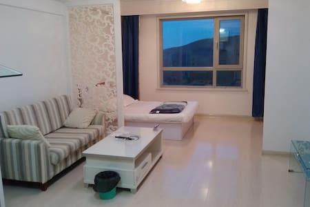大连开发区北欧假日滨海超值公寓(距海滨浴场0.5KM) - Dalian