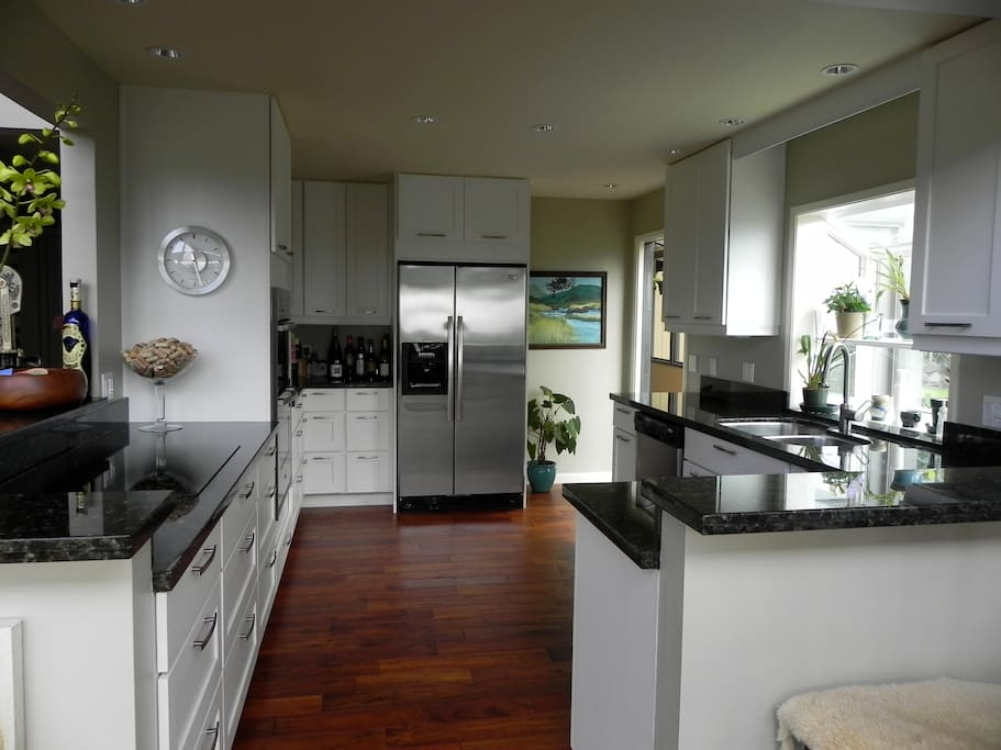 state of the art remodeled kitchen