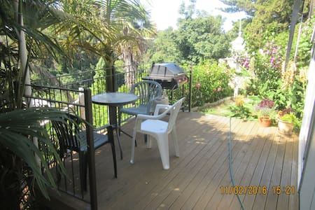 Studio Apartment - Napier - Apartment