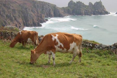 The Old Dairy, Treen Farm - Apartmen