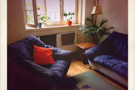 Zvone&Gonzo's habitat! - Appartement