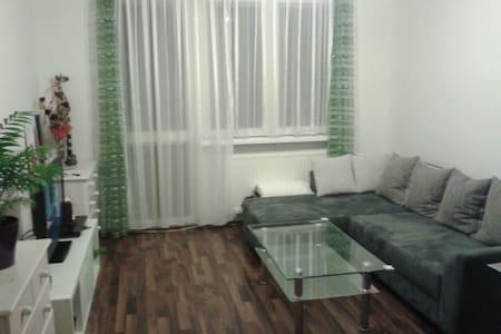 Comfortable living room in apt - Liberec