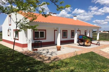 Quinta das Pipas #1 - Dům