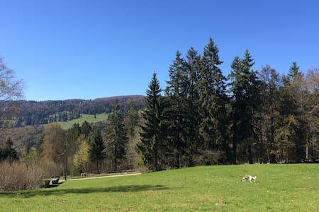 Idyllisch und ruhig gelegenes Chalet - Vauffelin - House