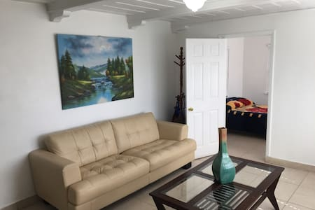 Private, Quiet and Comfortable Room in Miami - Miami - Casa