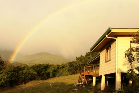 Monteverde Fig Tree House