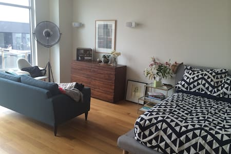 Large studio apartment in luxury building in Williamsburg, Brooklyn. Top floor balcony overlooking courtyard. Access to rooftop with stunning city views. Opposite McCarren Park and minutes to the L train at Bedford.