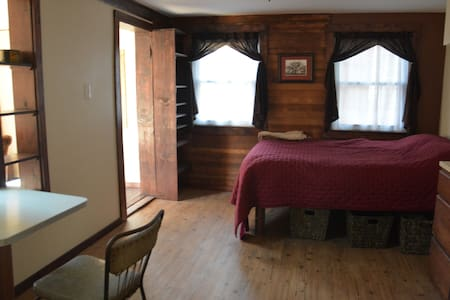 """Urban Cabin"" Apt in Town & Gorge - Ithaca - Apartment"